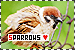 Birds: Sparrows